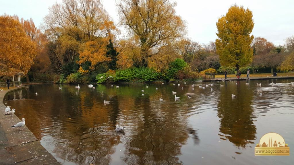 oaza de liniste dublin st stephen green by blog calator
