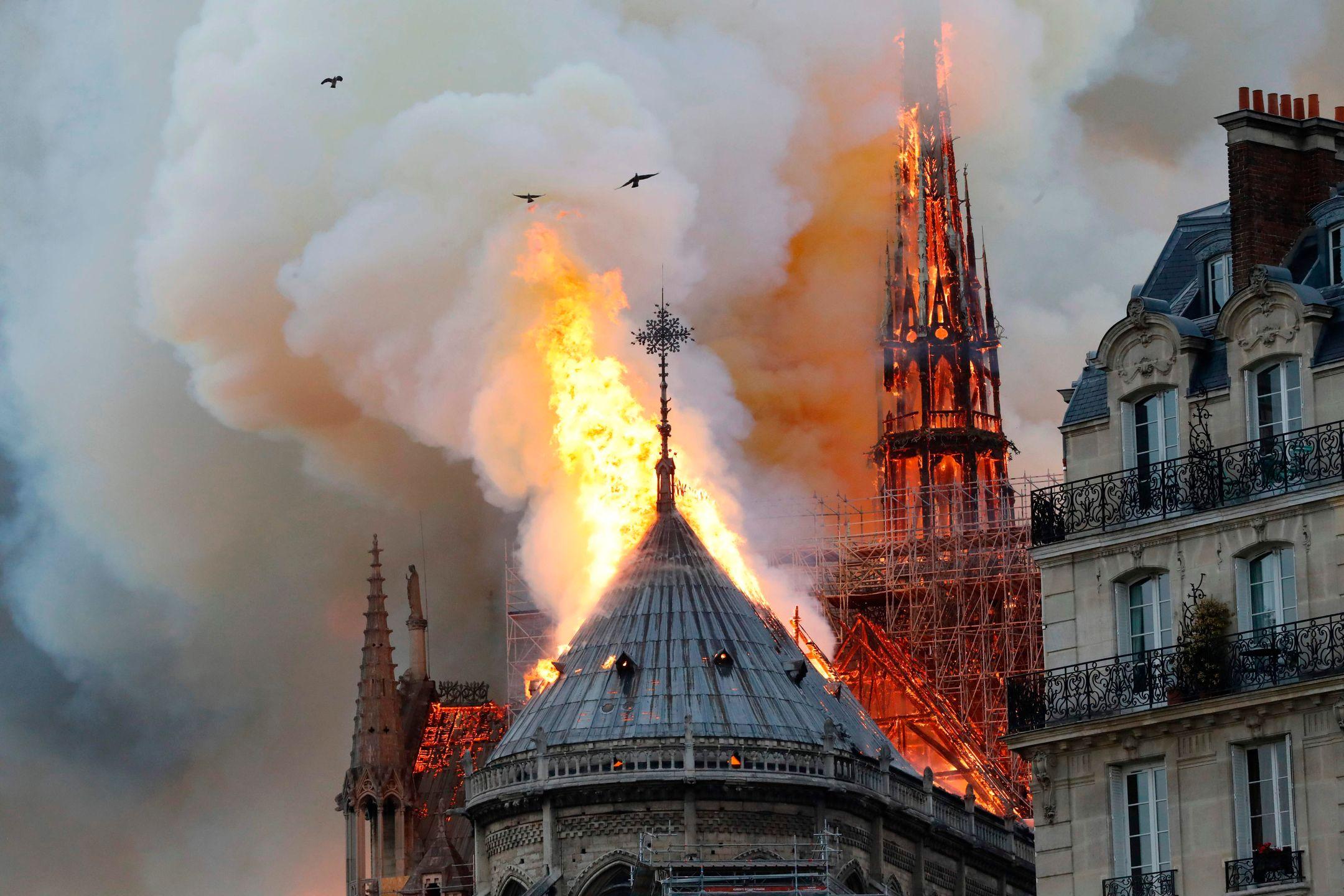 catedrala notre dame de paris incendiu