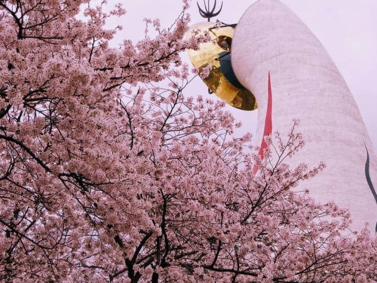 osaka japonia sărbatoarea florilor de cires din japonia blog calator